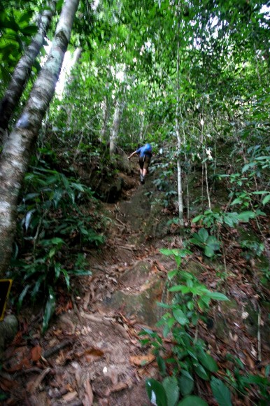climbing ridge 386x580 The Ill Fated Jungle Trek